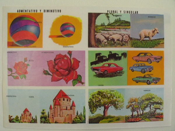 Vintage School Class Educational Poster-small & Large-plural