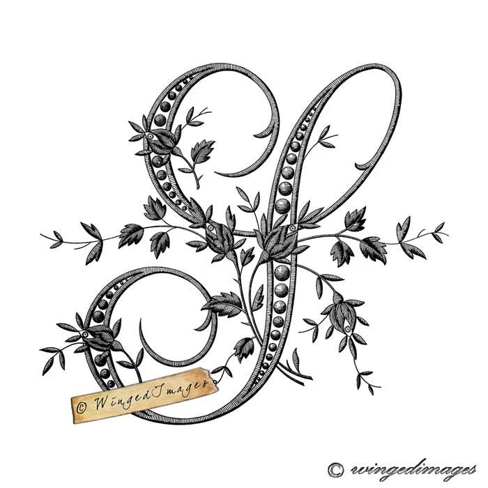 Antique French Monogram Letter S Instant Download Digital