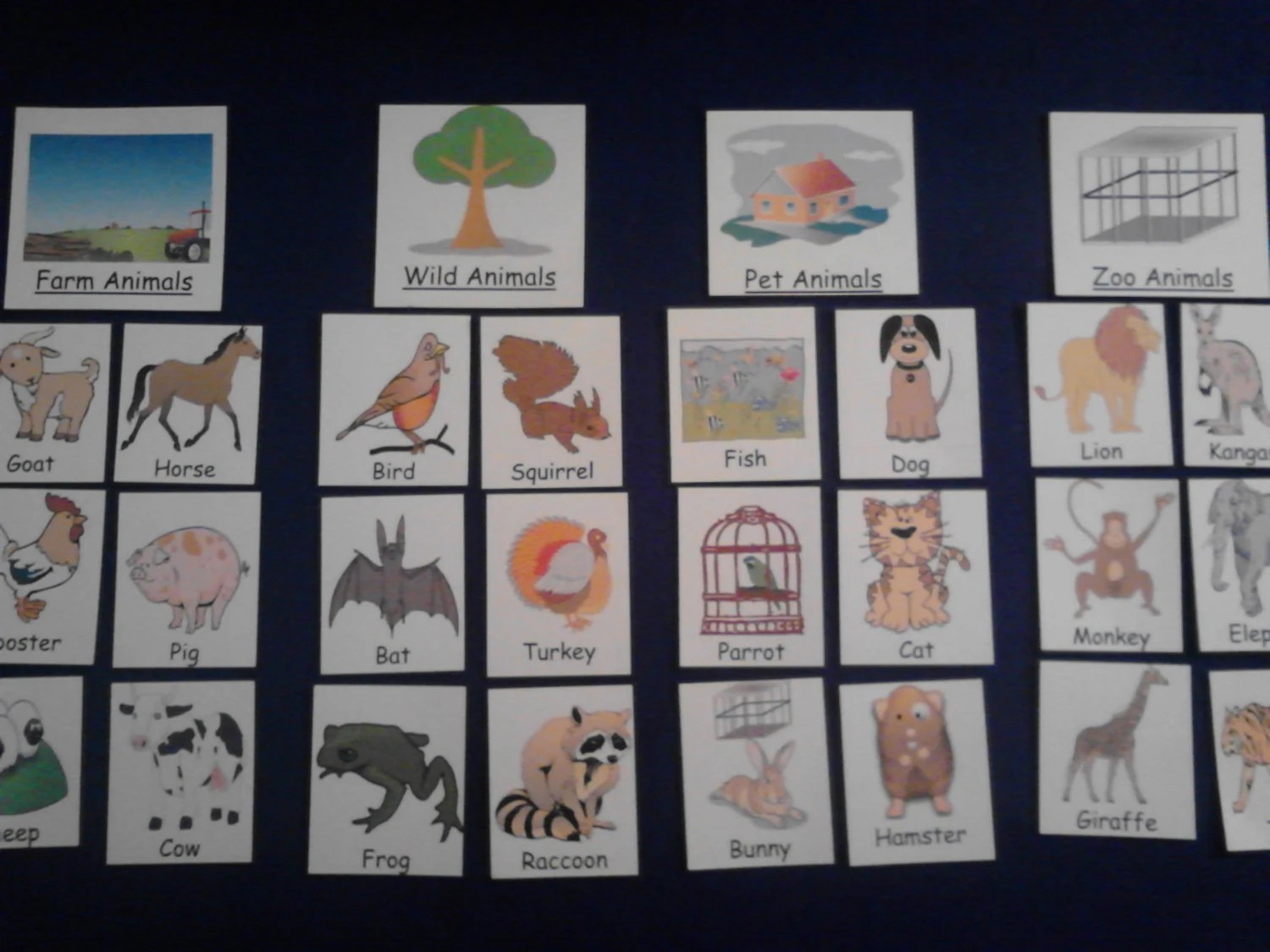 Animal Grouping Sorting For Felt Board Or Laminated Cards