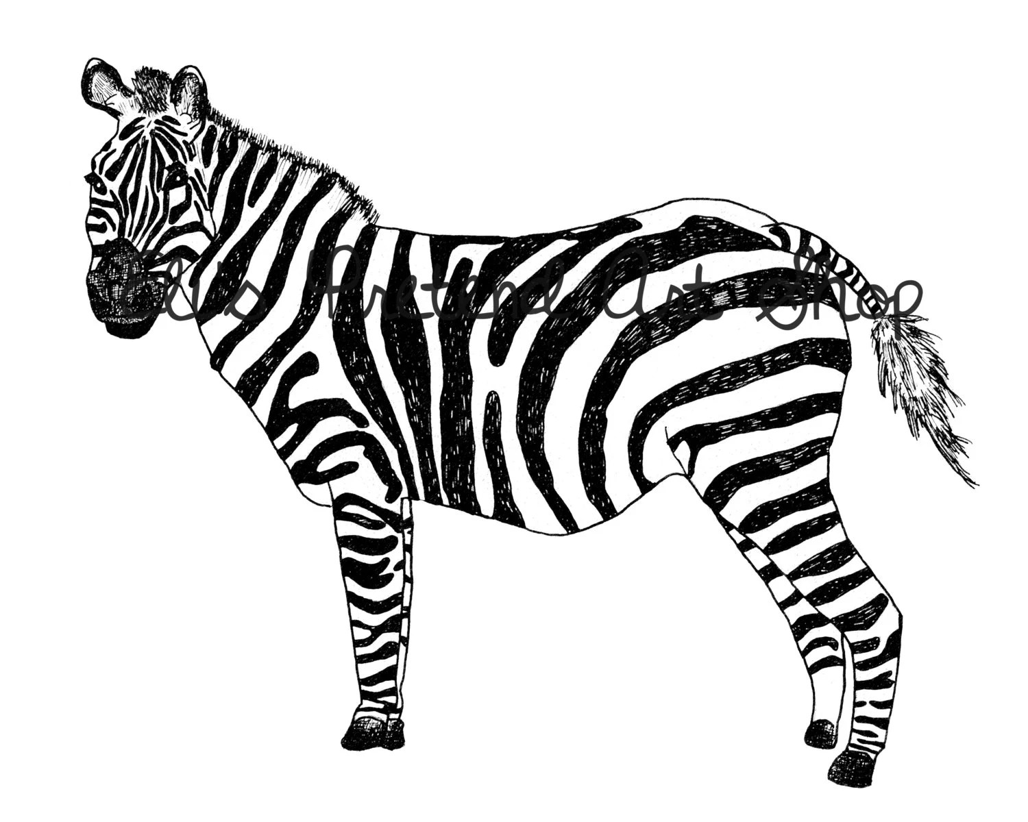 Easy Drawing Zebra Easy Tiger Face Coloring How To Draw A Cute