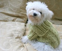 Winter Dog Sweater. Handmade Dog Clothes. Pet Clothing. Hand