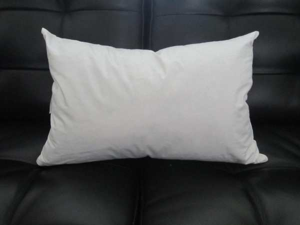 Pillow Inserts 12x20 12x16 12x1812x22 16x2613x2417x28