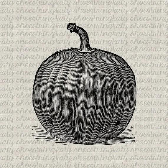 rustic pumpkin fall harvest holloween