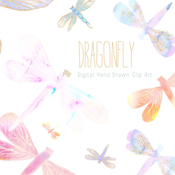 clip art - dragonfly hand painted
