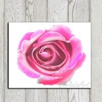 Flower print Wall decor Hot pink Home decor Pink flower decor