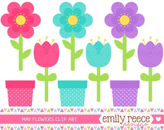 flowers spring blooms tulips