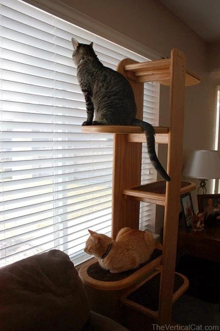 5 Ft Purrsilla Cat Tree from The Vertical Cat