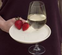 appetizer party plate with wine glass holder set by ...