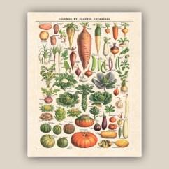 Vintage Posters For Kitchen Kart Art Vegetables Print Botanicals