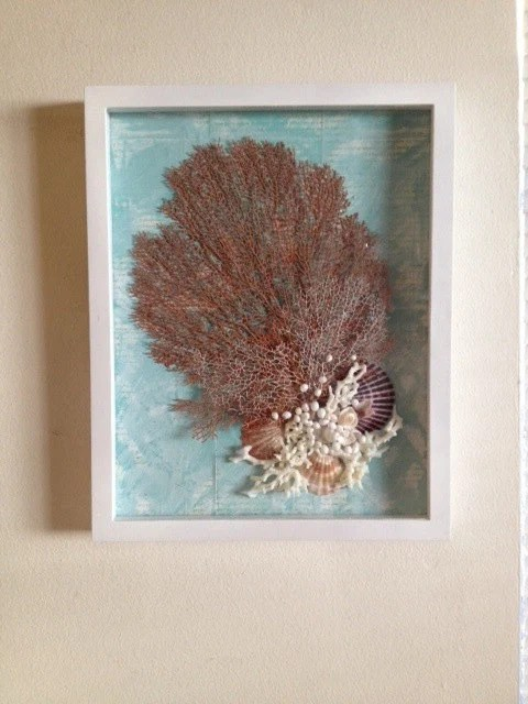 Items similar to White and Aqua Shadow box with Red and White Sea fan Sea shells and Coral