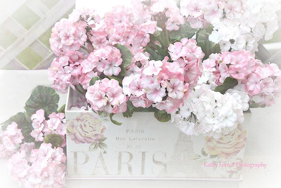 Shabby Chic Flower Photography Pink White Summer Garden