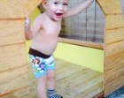 Little Acorn Designs 6 pack potty learning boxers made of organic cotton and quilted zorb 2