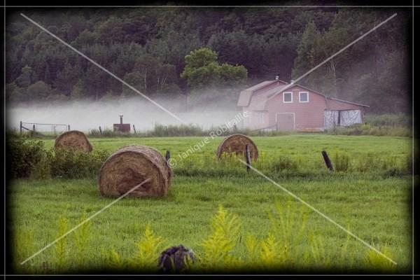 Landscape Farm Mist Countryside Home Decoration