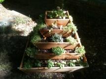 Assembled Pyramid Planter Herb Garden Strawberry