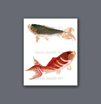 Asian Home Decor Koi Fish Wall Art Print 2. Koi is symbol for