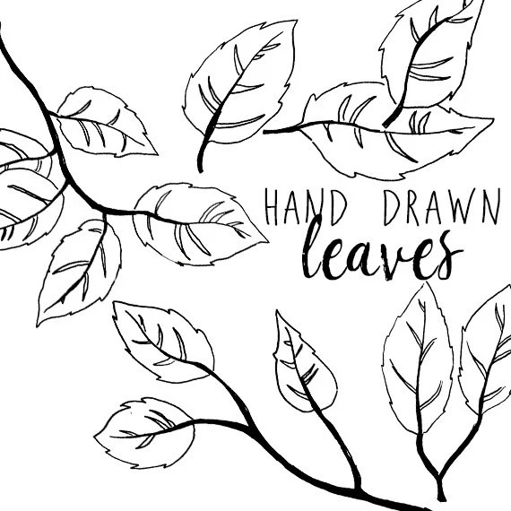 7 Ways To Draw Fall Leaves