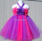 Hot Pink Tutu Dress Purple