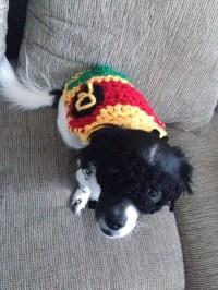 Robin Dog Costume Size Small/Medium