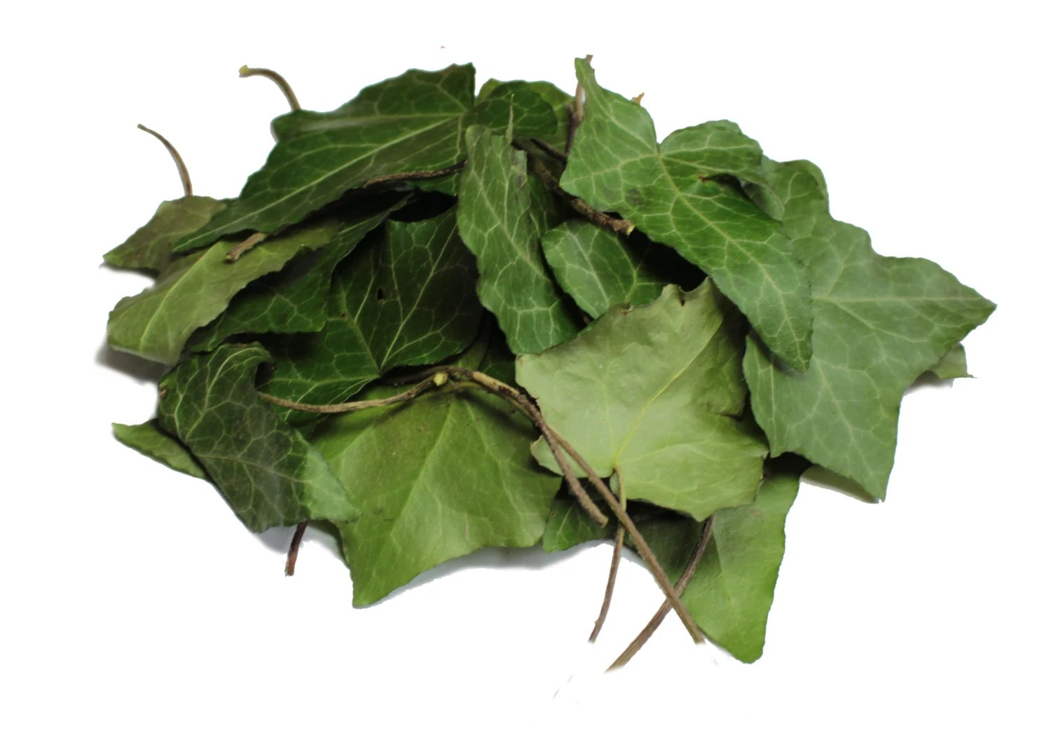 Dried Organic Ivy Leaves 1 oz 30 g Hedera helix common