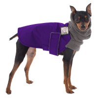 MINIATURE PINSCHER Winter Dog Coat Winter Coat for Dogs
