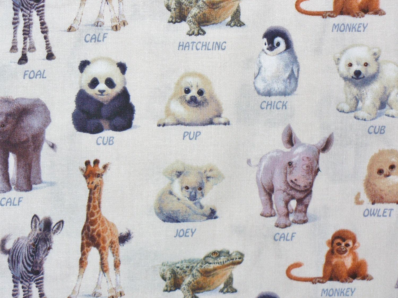 Animals Fabric Wild Baby Animals Wild Baby Birds