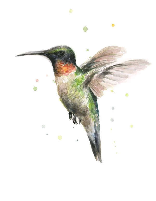 Hummingbird Watercolor Art Print Ruby-throated