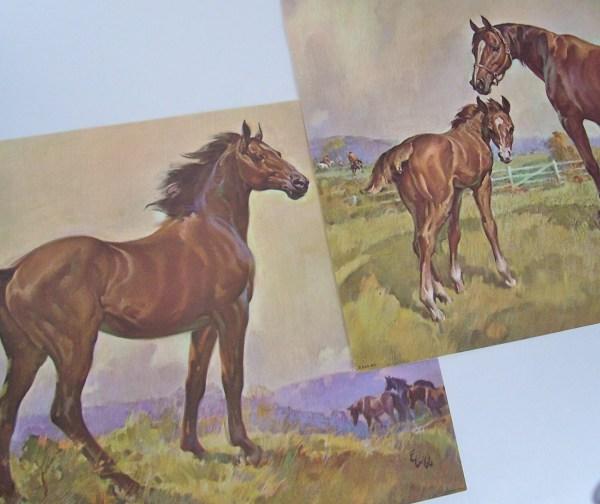 Vintage Horse Prints 1960'