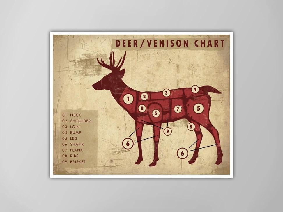 Venison Cuts Diagram