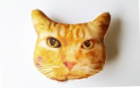 Personalized Cat Photo Pillow Pet Lover Gift Custom Cat Face