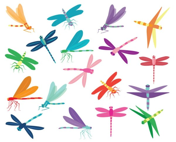 dragonfly clip art colorful