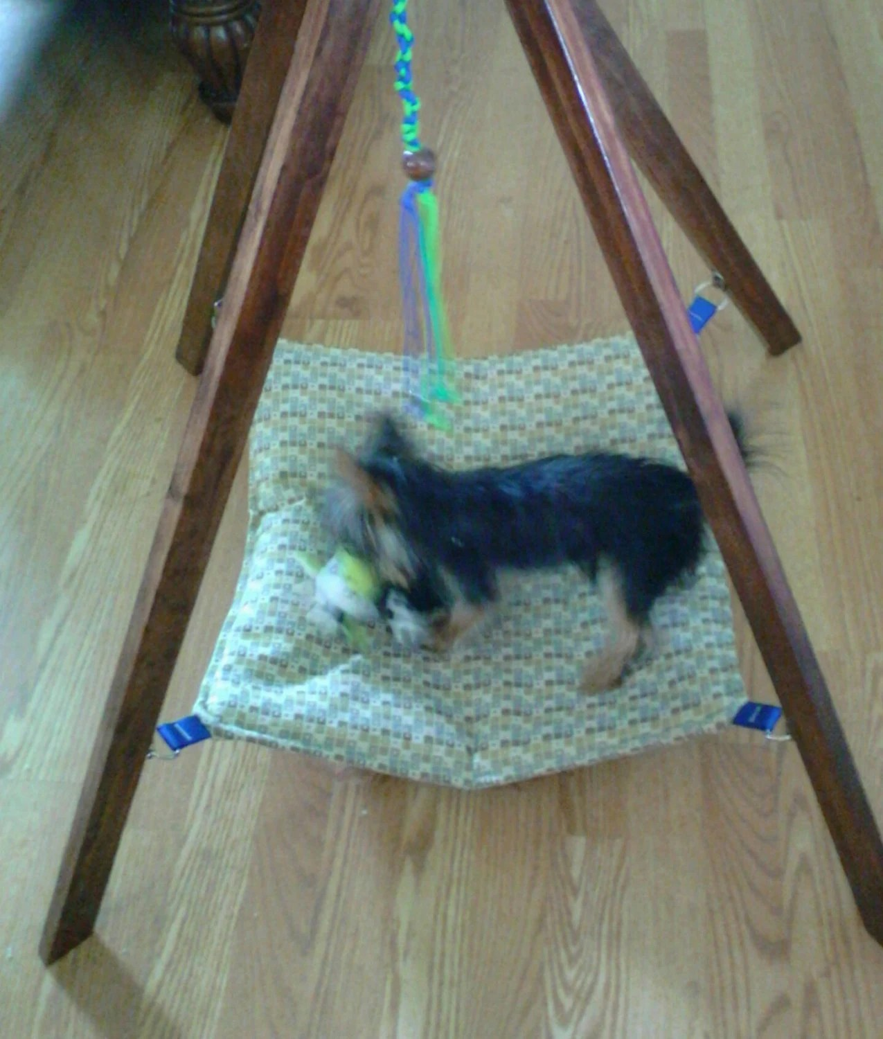 cat hammock under chair office 50 hanging teepee pet w toy bed small dog