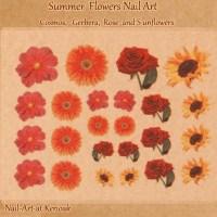 Summer Flower Nail Art, Cosmos, Rose, Gerber, Sunflower ...