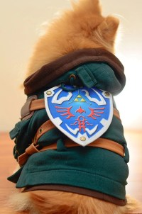 LEGEND OF ZELDA Link Dog Costume by HachiCorp on Etsy