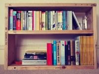 scaffold bookshelf