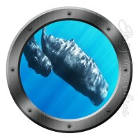 Submarine Porthole Whales View Window Decal Mural Peel and