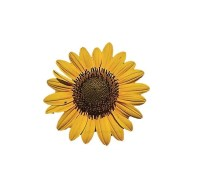 Nail Decal--Sunflower from maddiegraceboutique on Etsy Studio