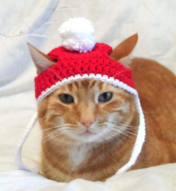Crochet Christmas Hat Cat