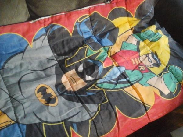Batman And Robin Sleepingbag