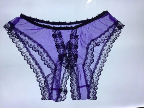 Sheer Vintage Style Nylon Open Crotch Panties Fetish Sissy