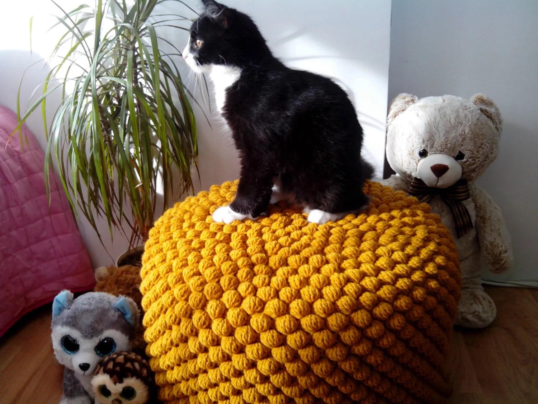 mustard yellow bean bag chair white living room covers chunky merino wool grey knit adult / gray