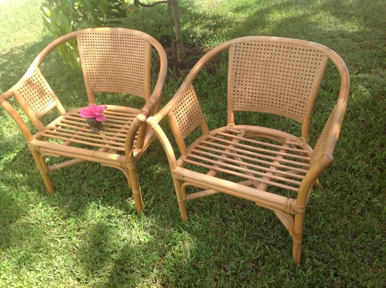 bamboo cane back chairs swivel chair home goods with double and sides pair of