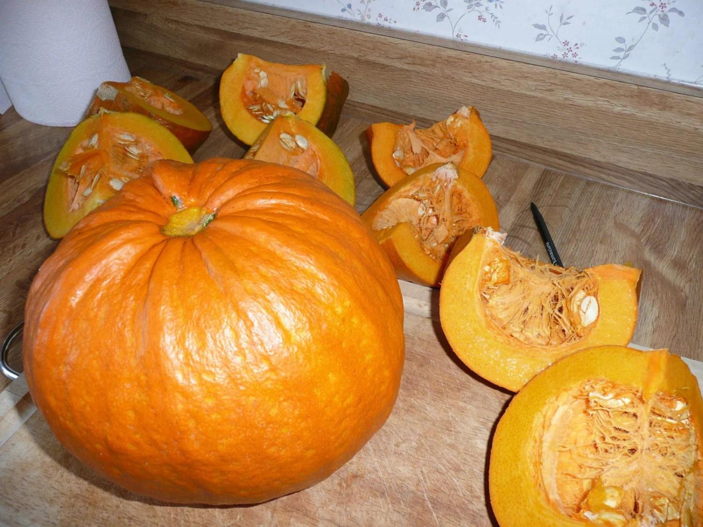 Pumpkin Seeds  Sugar Pie  Excellent For Baking  Bulk