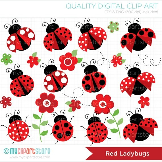 clipart - pretty red ladybugs