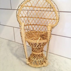 Fan Back Wicker Chair Sure Fit Covers Bed Bath And Beyond Peacock Doll Small
