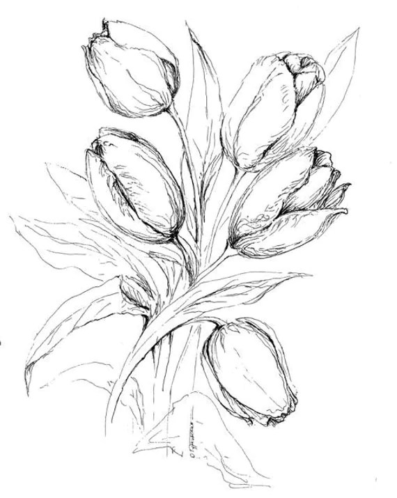 Tulips coloring book page printable color in by