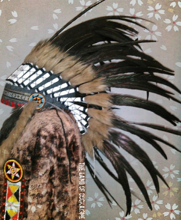 20+ Indian Chief Hat Pictures and Ideas on STEM Education Caucus