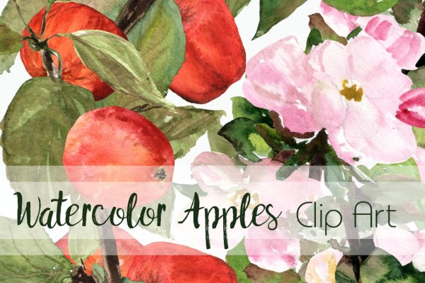 watercolor apples clip art collection