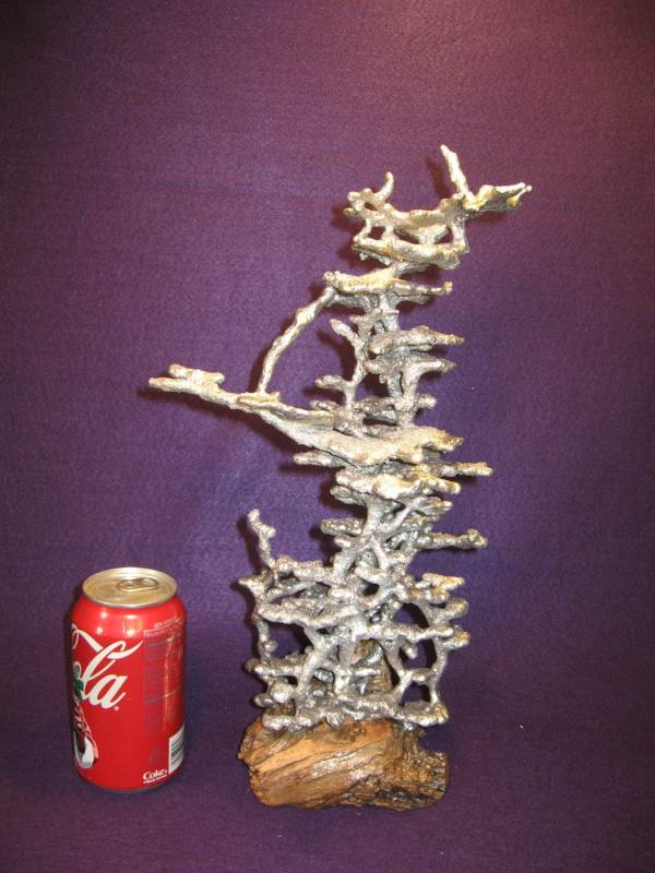 Fire Ant Colony Art - Year of Clean Water
