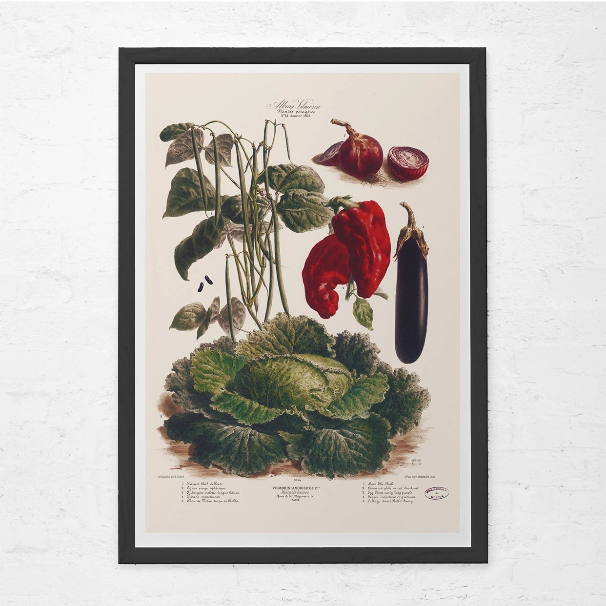 vintage posters for kitchen narrow base cabinet art print antique vegetable poster