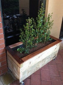 Rustic Natural Outdoor Planter Boxes Herbs Crawlers